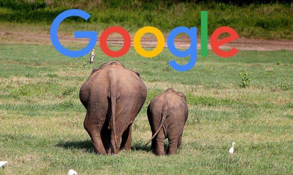 Google、1位のページのタイトルが大きいモバイル検索をテスト中