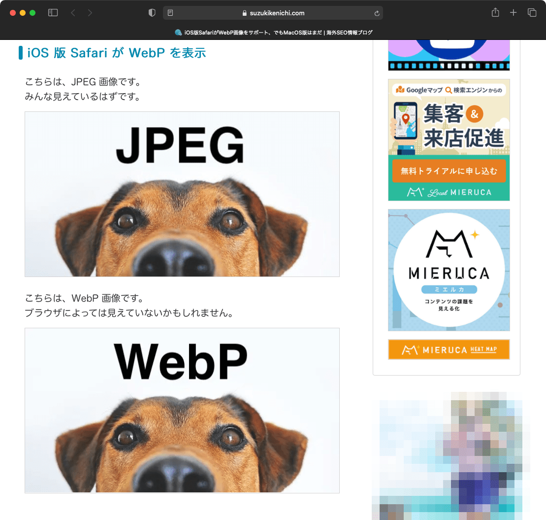 Big Sur の Safari が WebP を表示