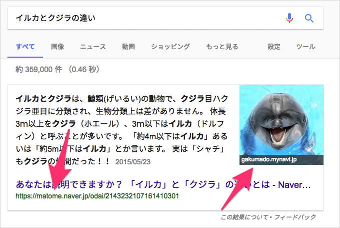 「イルカとクジラの違い」の強調スニペット