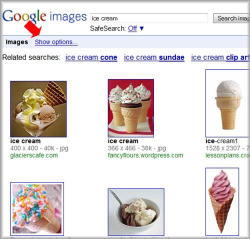 Google画像検索に検索オプション .