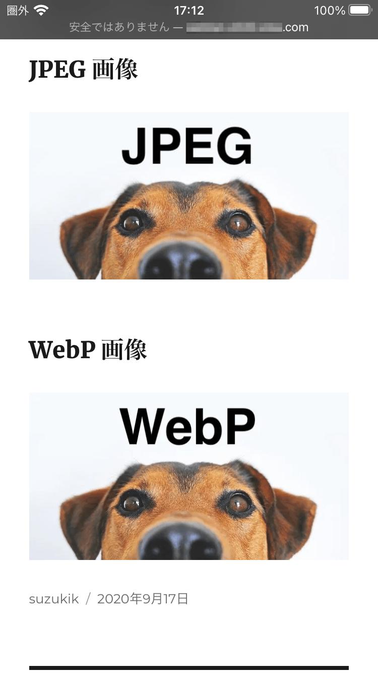WebP を表示できる iOS 版 Safari 14